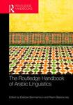 An alternative approach: Understanding diglossia/code switching through indexicality: The case of Egypt